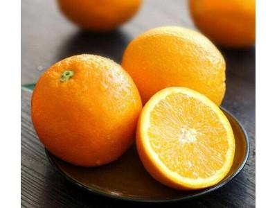新奇士Sunkist澳洲一级脐橙 12粒澳橙 单果约140-190g 生鲜进口水果橙子