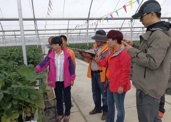 多位农业专家莅临指导 现代农业示范基地成果喜人